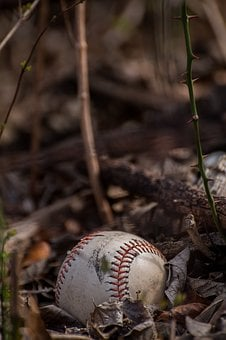 Baseball, Background Image, Leaves, Autumn, Sport