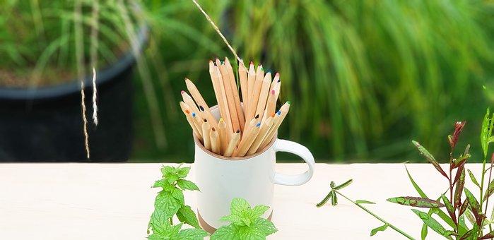 Color Pencil, Pencil, Garden, Figure, Nature, Green
