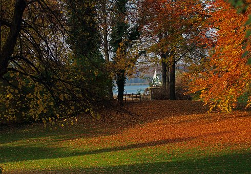 Park, Autumn, Nature, Tree, Landscape, Leaves, Season