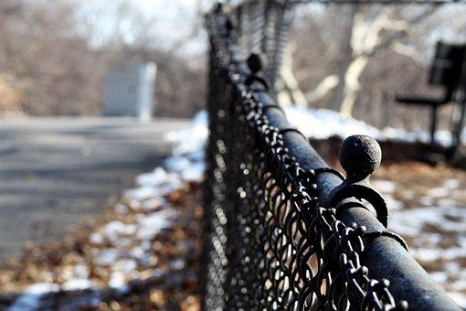 Fence, Street, Urban, City, Trees, Blur