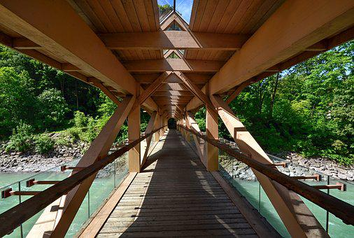Web, Wood, Bridge, Boardwalk, Transition, Water