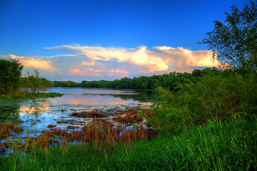 Marsh, Clouds, Sky, Nature, Landscape, Water, Summer