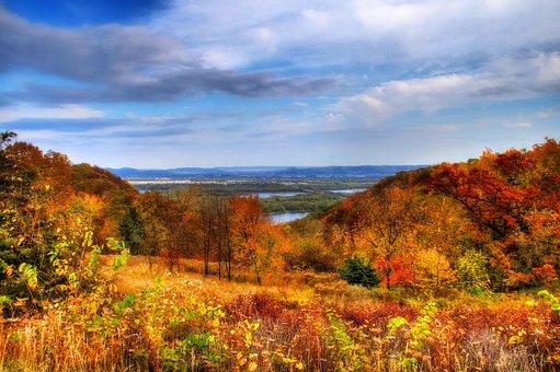 Sky, Leaves, Nature, Autumn, Landscape, Tree, Leaf