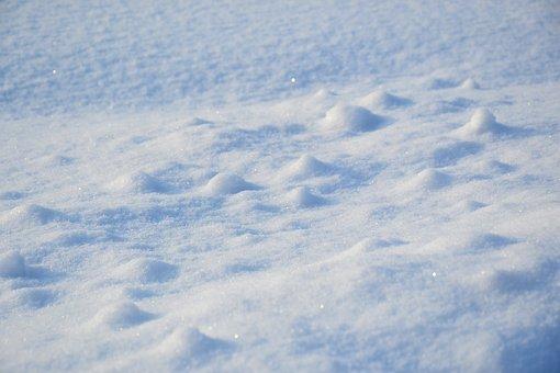 Winter, Snow, Field, Nature, Snowy Field, Snowdrifts