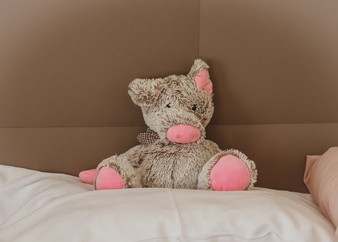 Soft Toy, Pig, Pillow, Lucky Charm, Stuffed Animal