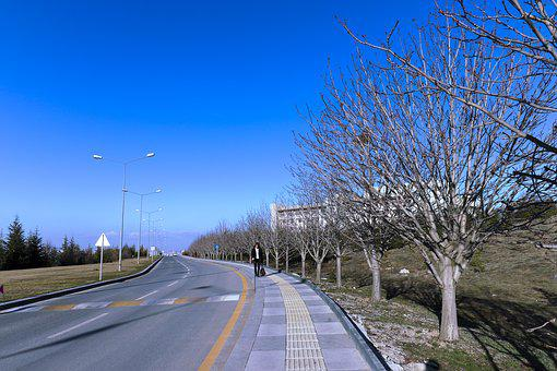Bilkent, Road, Footpath, Cars, Trees, Autumn, Winter