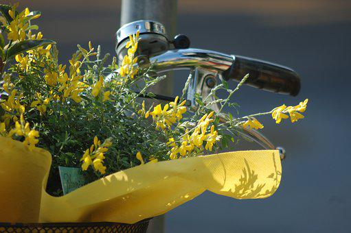 Flowers, Spring, Bike, Yellow Flowers, Nature, Floral