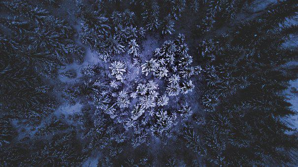 Norway, Drone, Forest, Snow, Landscape, Air, Nature