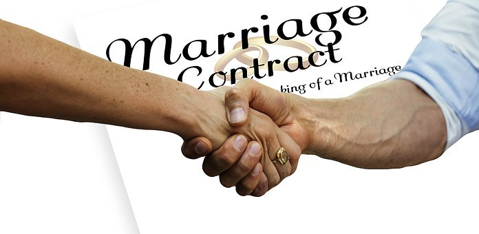 Prenup, Before, Handshake, Contract, Compatible