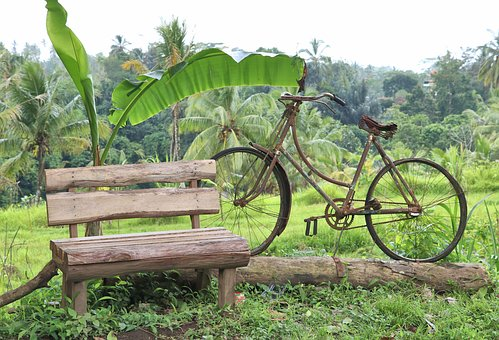 Work Of Art, Bicycle, Bench, Landscape