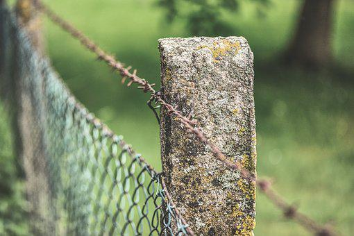 Fence, Barbed Wire, Fence Post, Barrier, Wire, Metal