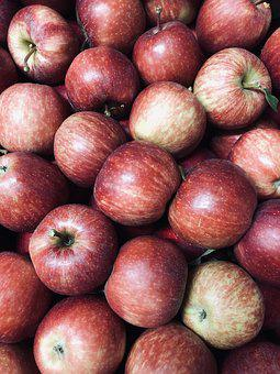 Gala, Apples, New, Fruit, Healthy, Red, Organic, Snack