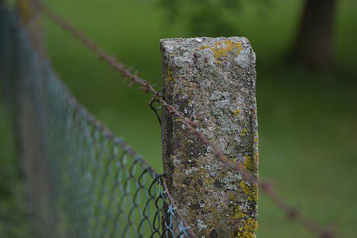 Fence Post, Barbed Wire, Demarcation, Weathered, Old