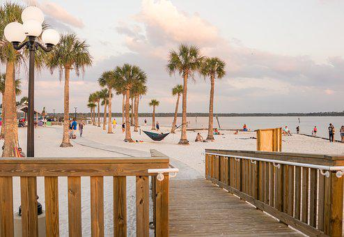Beach, Palm Trees, Exotic, Pine Island, Florida, Nature