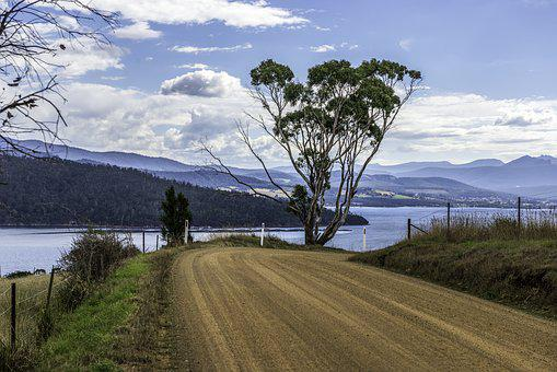 Road, Nature, Sea, Tree, Landscape, Sky