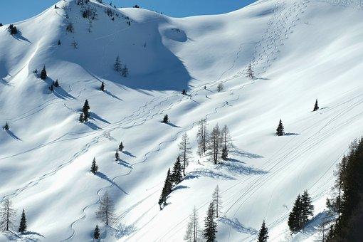 Landscape, Nature, Winter, Wintry, Snow, Snow Landscape