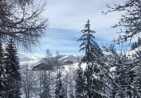 Wintry, Alpbach Valley, Alpine, Snow, Alm, Mountains