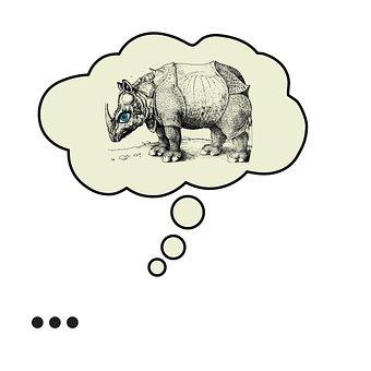 Rhino, Bubble, Albrecht Duerer Rhino, Thinking, Art