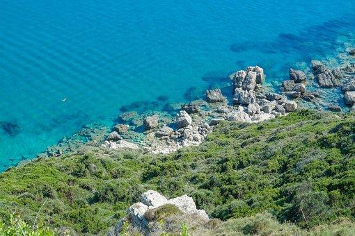 Sea, Coast, Water, Rock, Stones, Bush, Turquoise, Blue