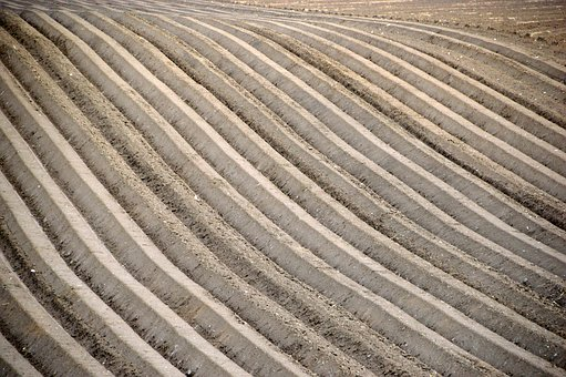 Agriculture, Field, Harvest, Landscape, Earth, Plowing