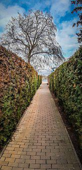 Park, Pavement, Path, Alley, Narrow, Abandoned
