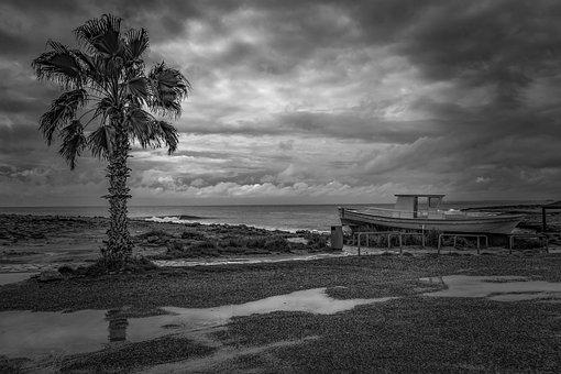 Rainy Day, Beach, Boat, Palm Tree, Winter, Scenery, Sky