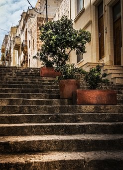 Stone Steps, Street View, Olive Trees, Planters