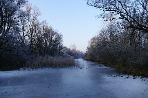 Nature, Country, Winter, Frozen, Water, Riečka, Trees
