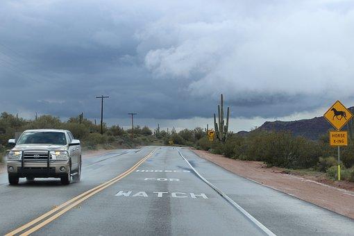 Desert, Saguaro, Cactus, Weather, Landscape, Outdoors