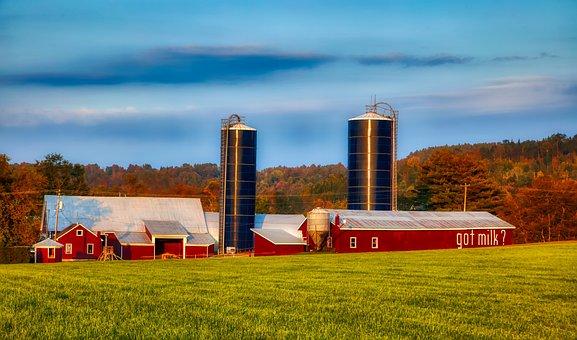 Dairy Farm, New Hampshire, New England, America