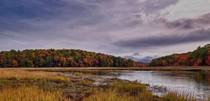 Sherman Lake, Marsh, Vermont, America, Autumn, Fall