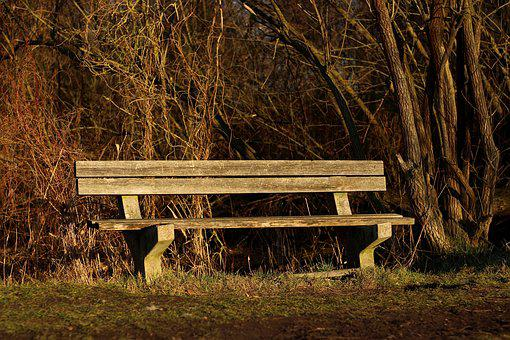 Bank, Wooden Bench, Bench, Sit, Seat, Park Bench, Wood