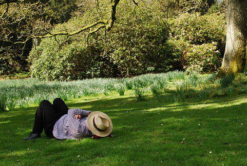 Man, Laid Back, Summer, Hat, Daffodils, Leisure, Person