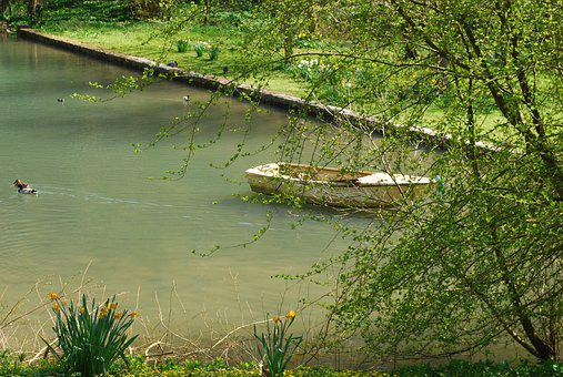 Boat, Lake, Pond, Summer, Trees, Nature, Water, Fishing