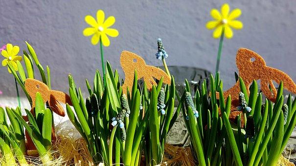 Easter, Spring, Easter Bunny, Felt, Muscari, Deco