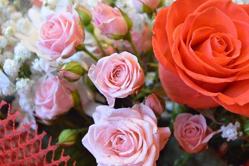 Bouquet, Flowers, Roses, Pink, Petals, Beauty