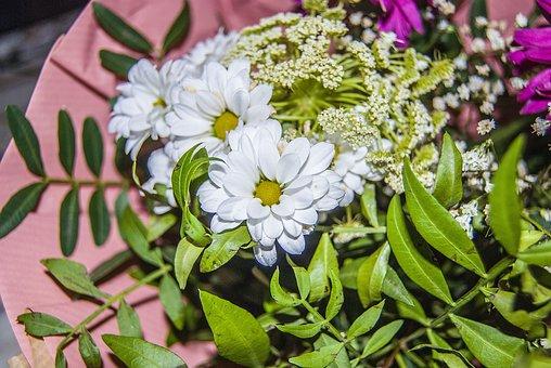 Bouquet, Plant, Decoration, Petals, Beautiful