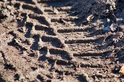 Mature Imprint, Mud, Tire Track, Profile