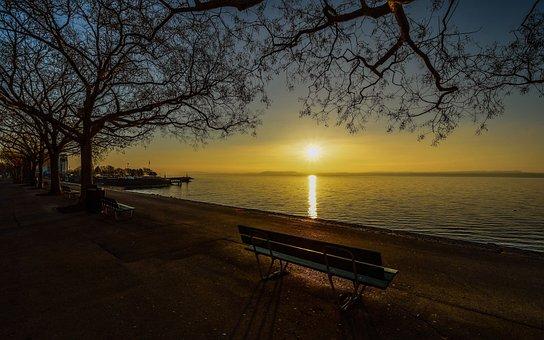 Sunrise, Lake, Trees, Bench, Water, Reflection, Aurora