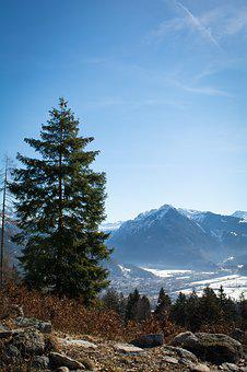 Landscape, Outlook, View, Tree, Sky, Nature, Mountains