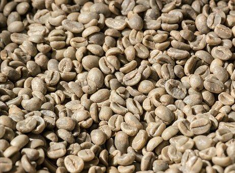 Coffee, Coffee Beans, Beans, Raw, Ungeröstet