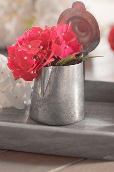 Hydrangea, Rosa, Summer, Pure, Flower, Flowers, Nature