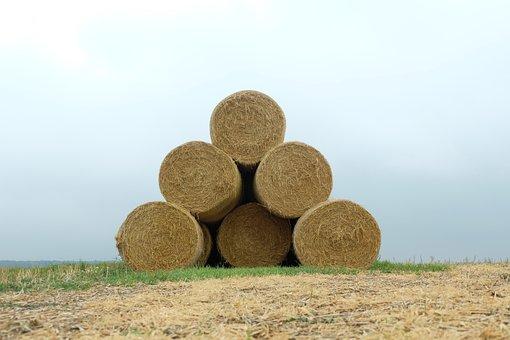 Straw Bales, Landscape, Agriculture, Harvest, Hay Bales