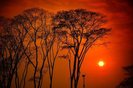 Sun, In The Sky, Evening, Landscape, Natural, Beautiful