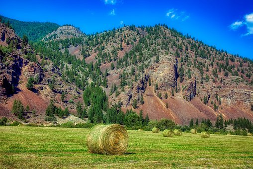 Montana, America, Mountains, Hay Bale, Hayfield, Field