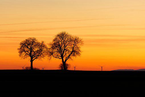 Tree, Afterglow, Twilight, Sunset, Nature, Scenic, Red