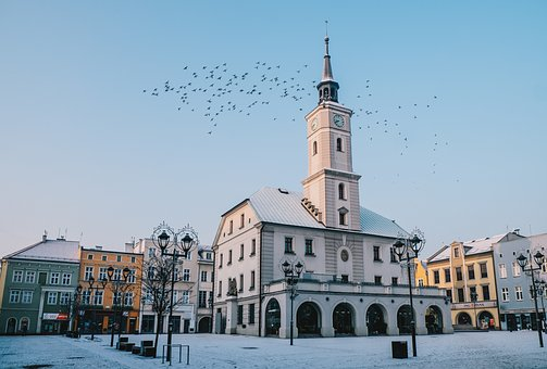 Gliwice, The Market, The Town Hall, Birds, Architecture