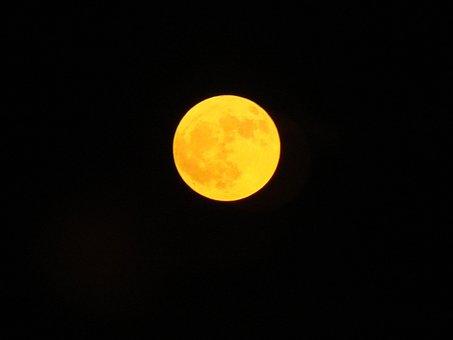 Moon, Amber Moon, Harvest Moon