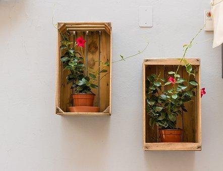 Flowerpot, Box, Wall, Decoration, Flower Pots