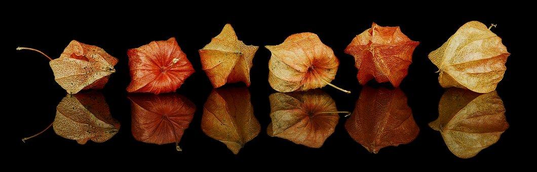 Fall Decorations, Autumn Decoration, Autumn, Decoration